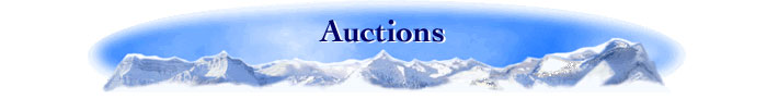 Lange Auction Realty, LLC